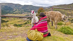 peru-sacred-valley-native-with-llama.jpg
