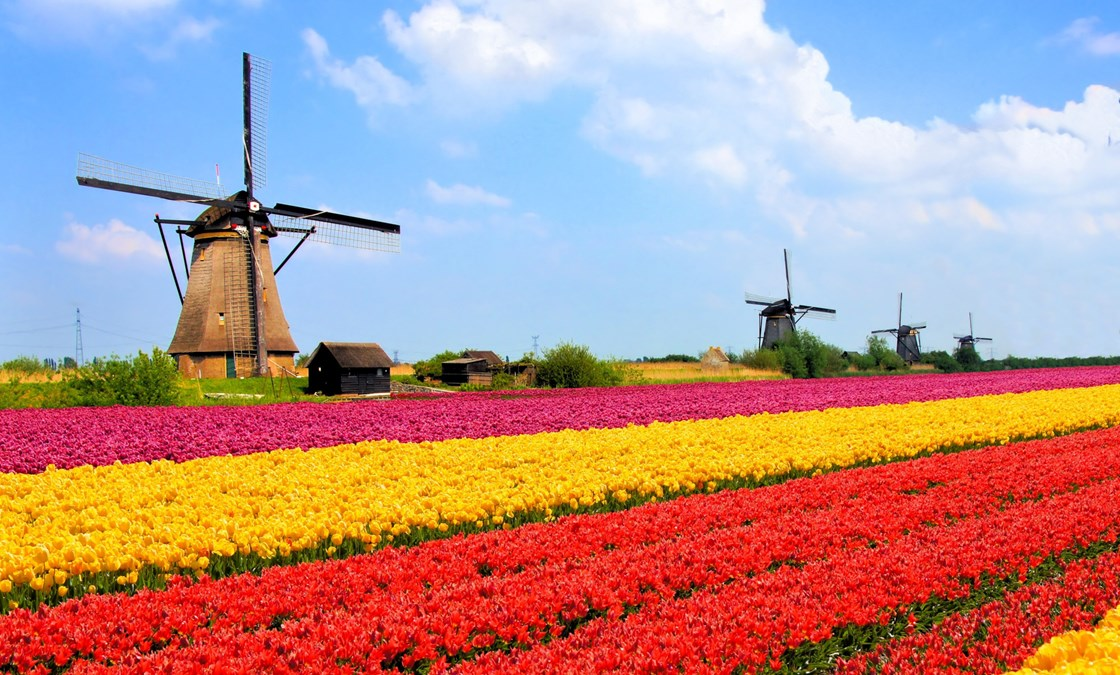 Holland and Belgium at Tulip Time River Cruise | Grand European Travel