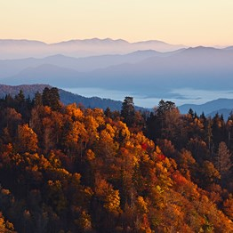 Heart of the South with the Great Smoky Mountains