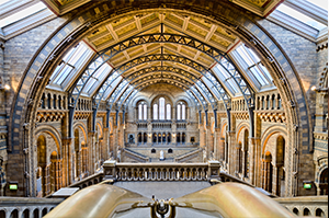 the natural history museum london england